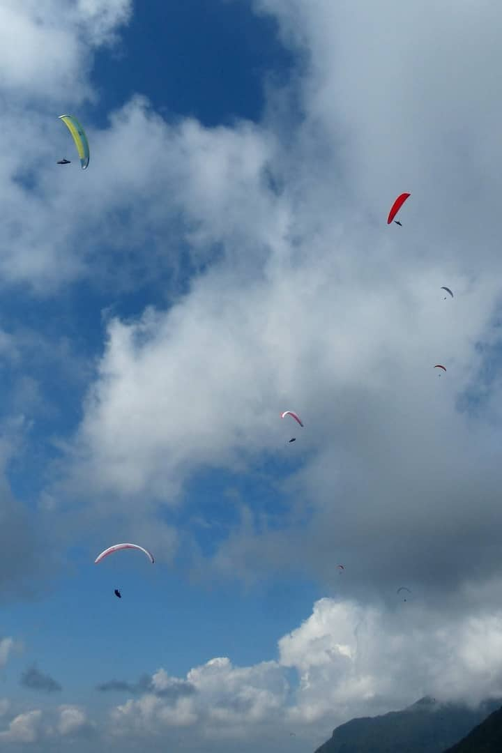 Flying with lots of paragliders