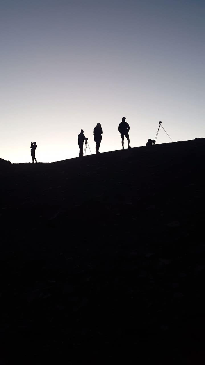 Participants and the last light of day