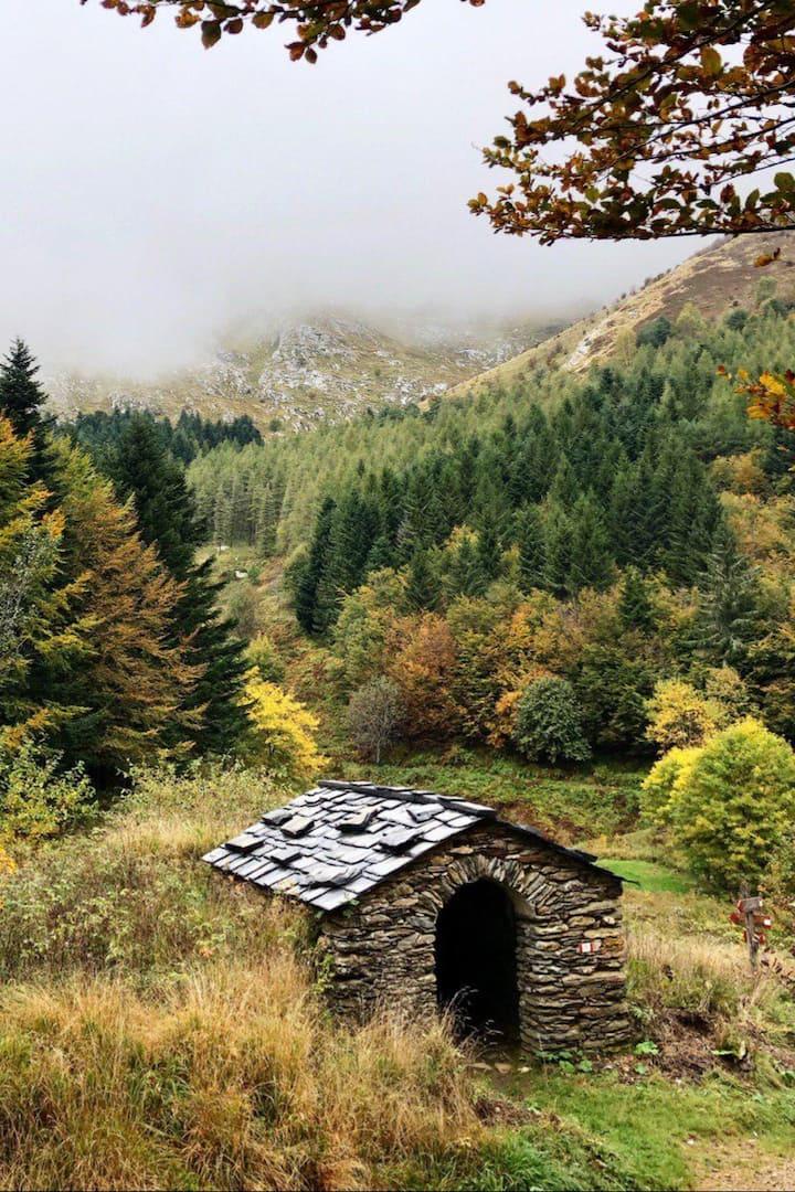 Mosceta Valley
