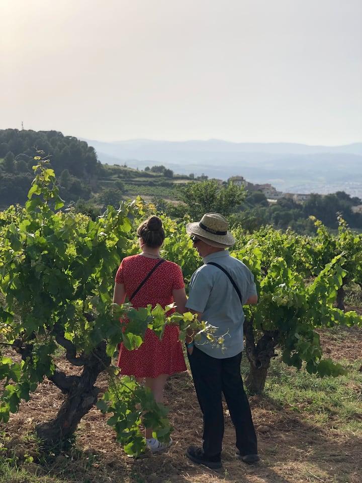 Walking between the vineyards