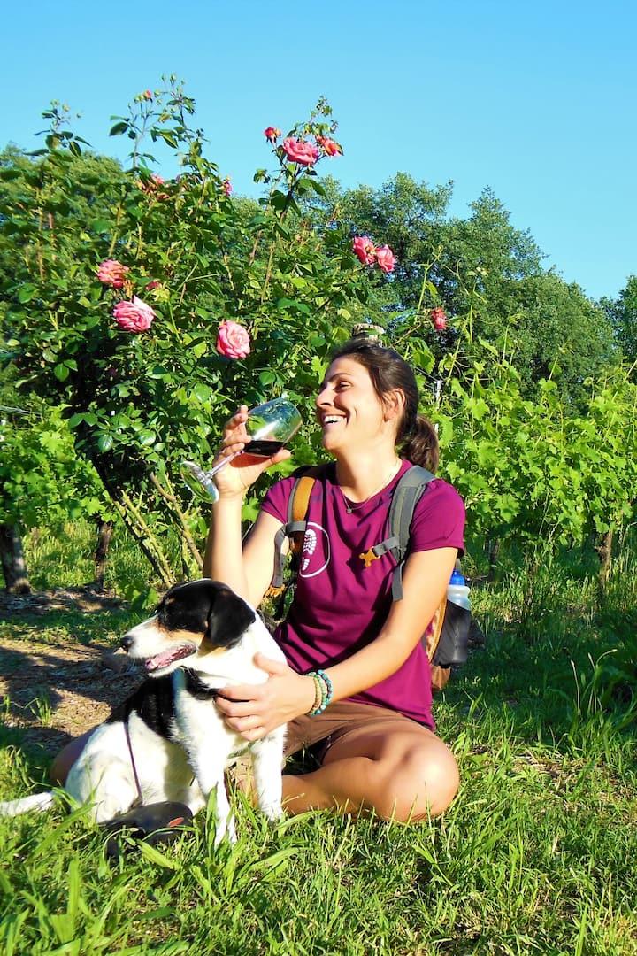 Trekking & WineTasting Verona