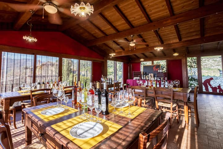 Panoramic wine tasting room