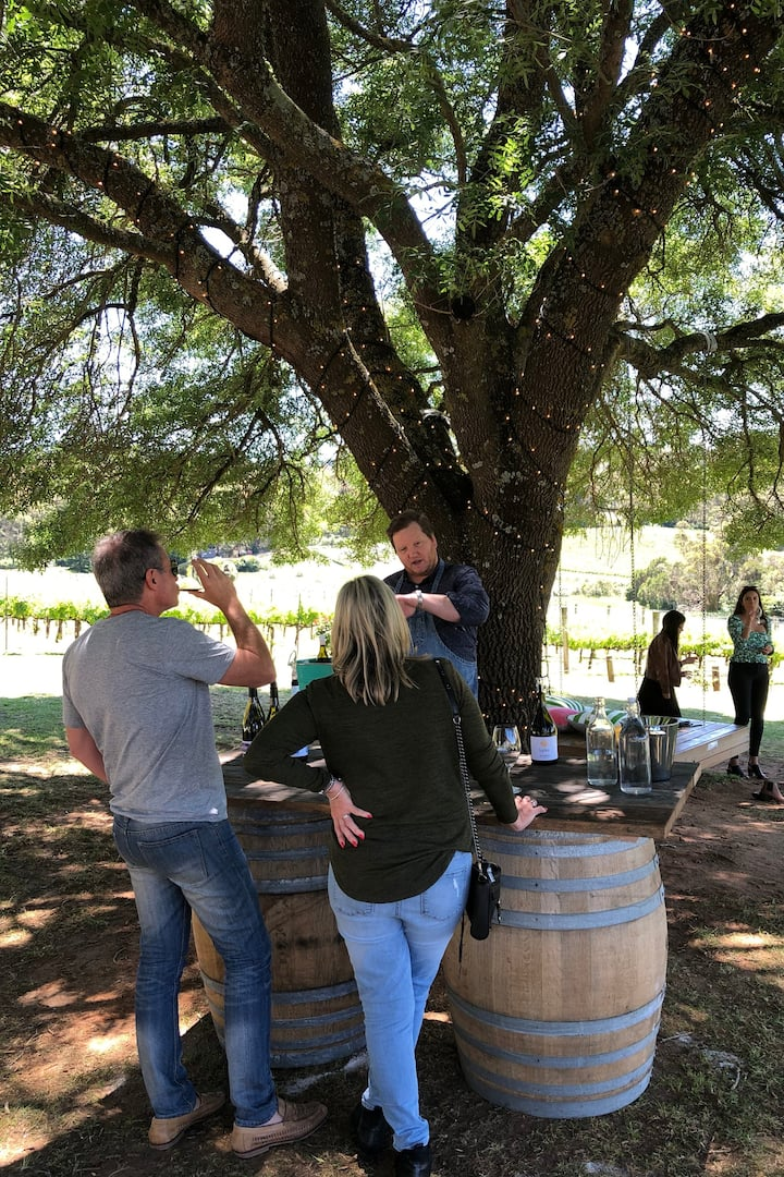 """Amazing wine tasting under the tree"""