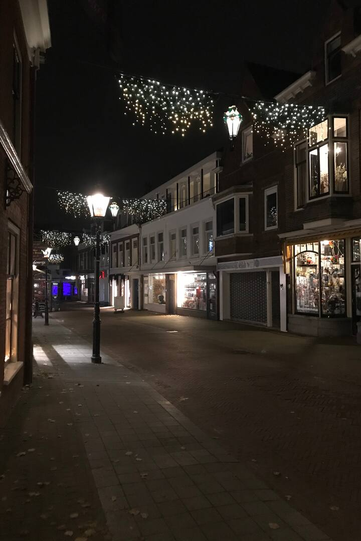 shopping place Oud Rijswijk since 1650