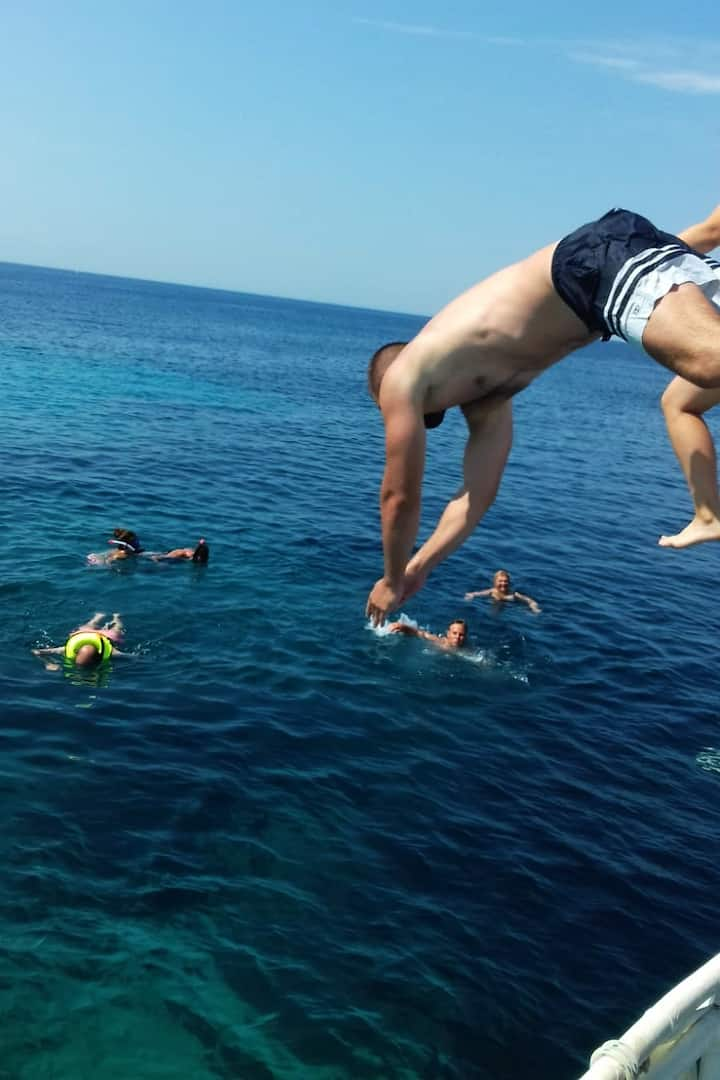 Guests jump into the sea