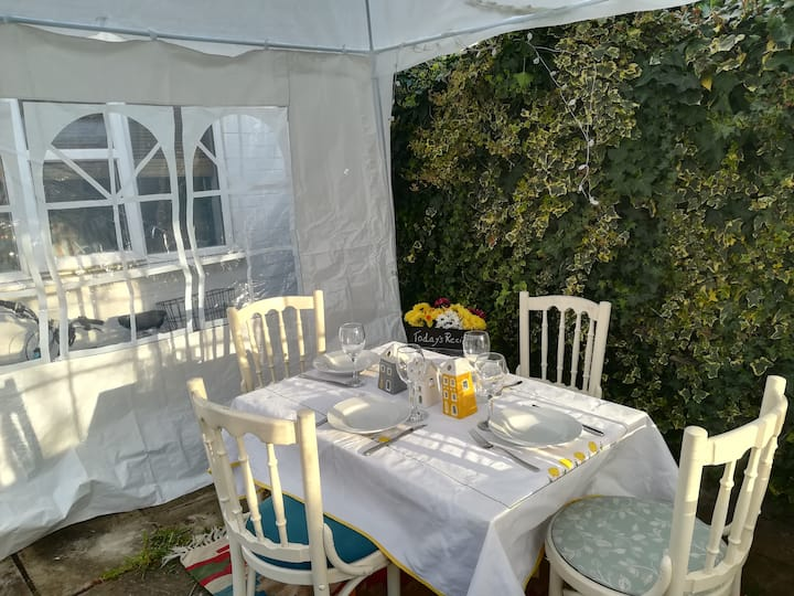 the table in the garden