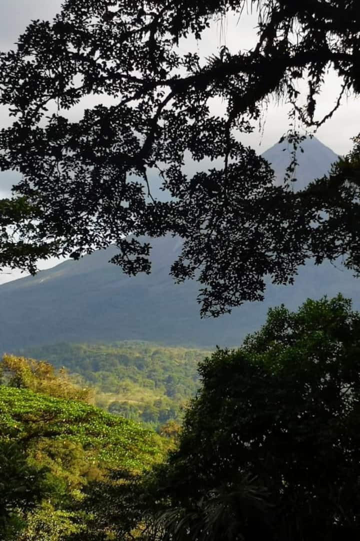 Arenal Volcano through the trees