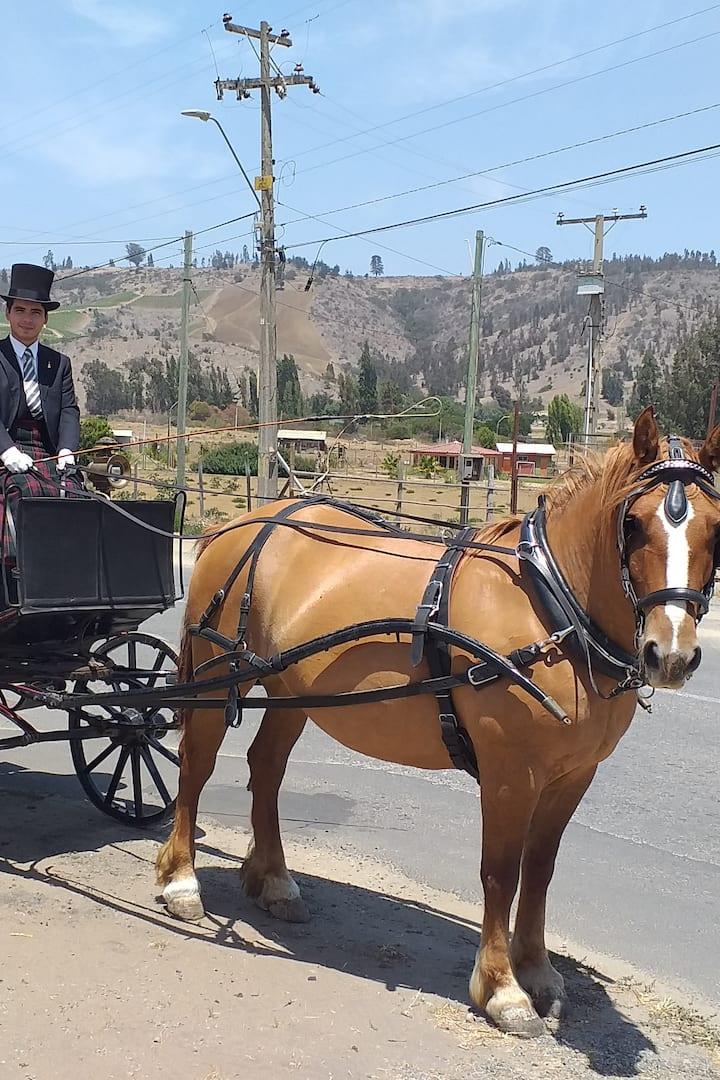 Ride around Lo Abarca