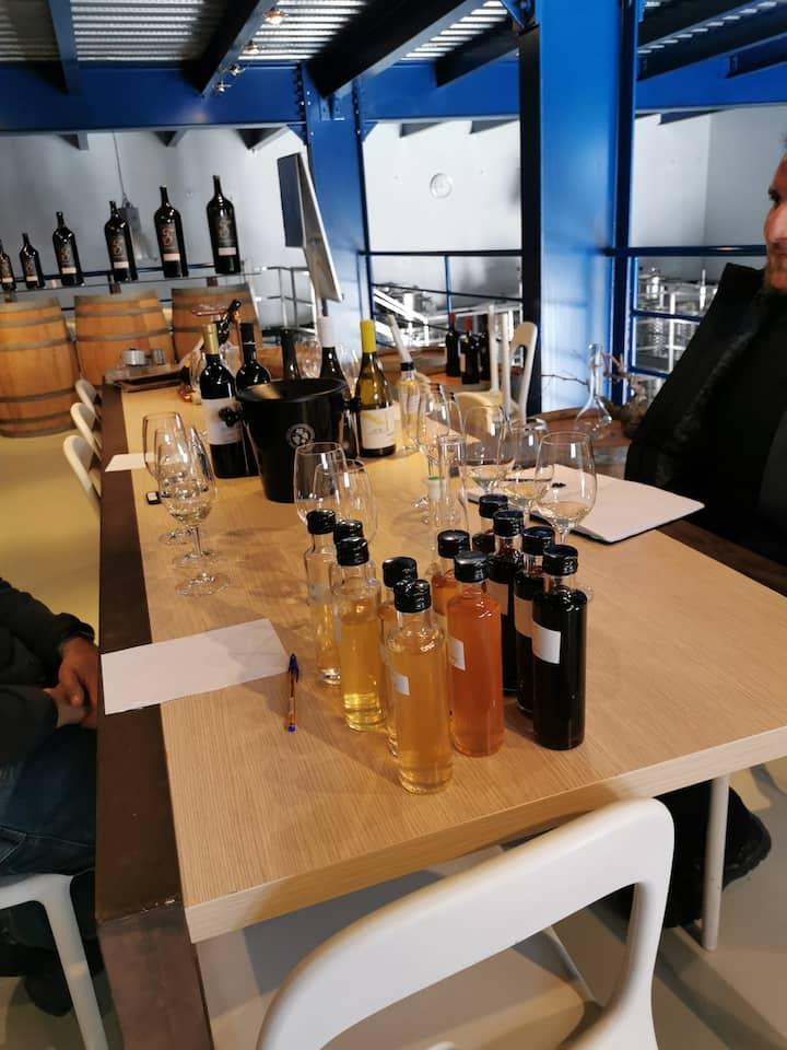 Experimental vinification tastings