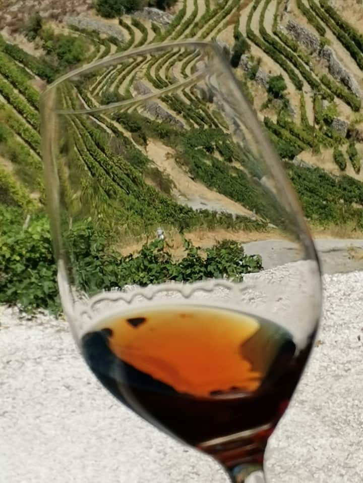 Checking out the viscocity of the wine