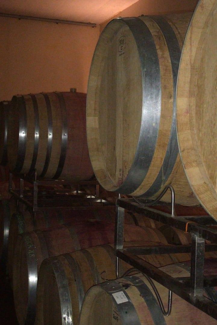 Barrels at Schwarzböck Winery