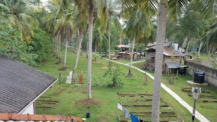 Farm garden and path to walk aroun