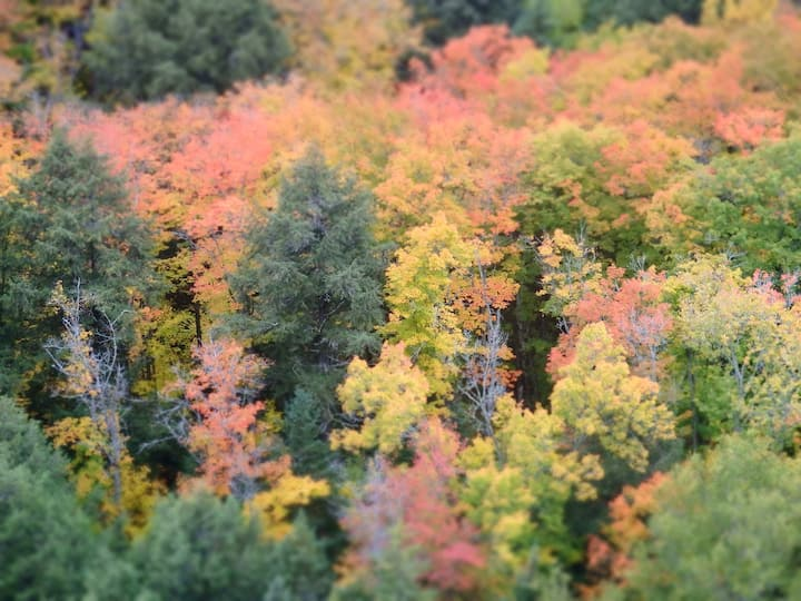 Canada's beautiful fall foliage