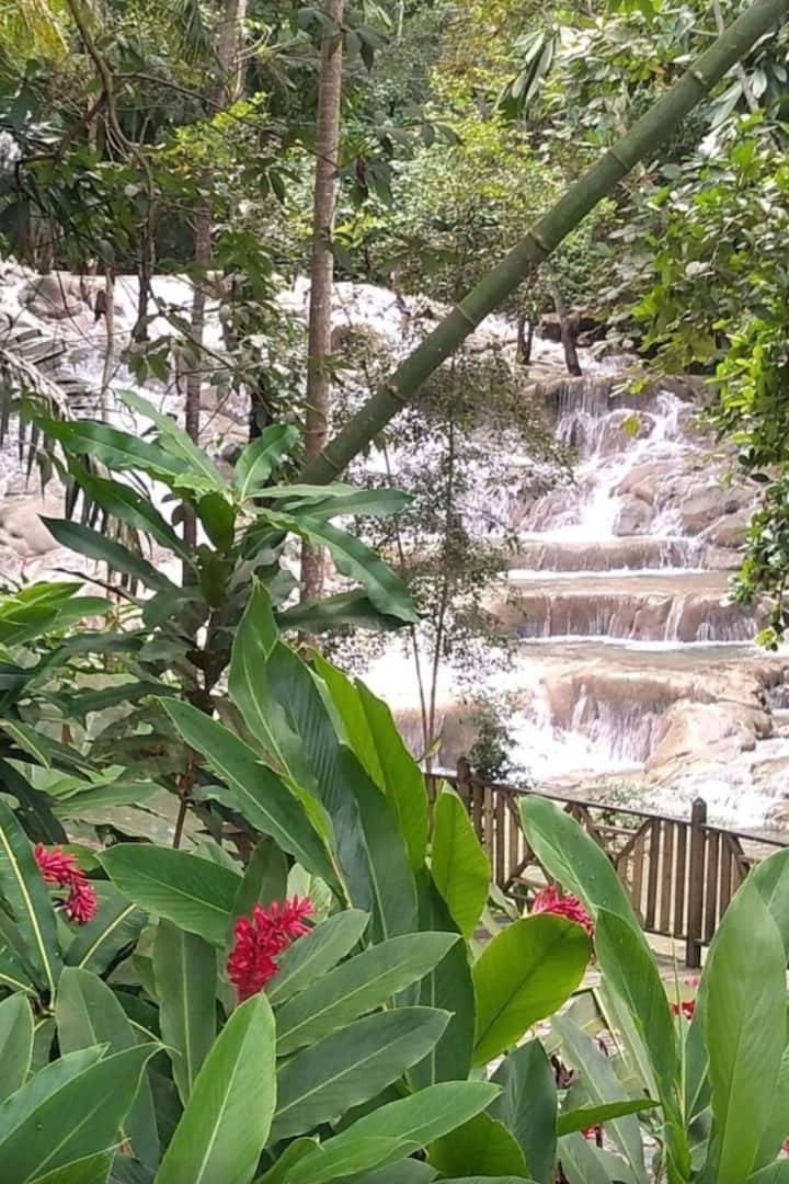 The lush view of the falls