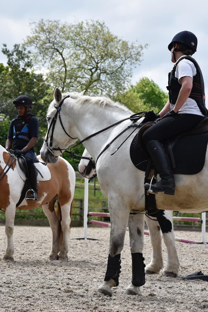Riding lessons for all ages & all levels