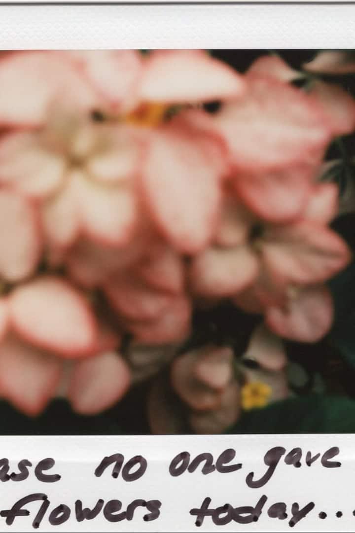 Flowers from Enid Haupt Garden