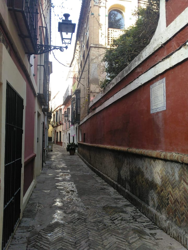 Its a curvy street? Find out why in tour