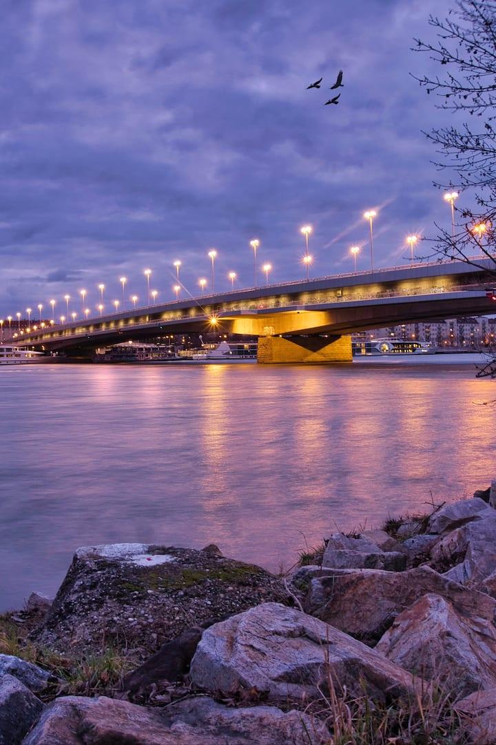 At the Donau River