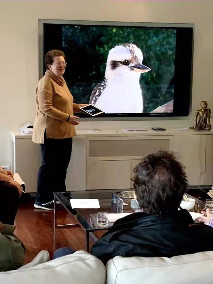 The basics - Laughing Kookaburra