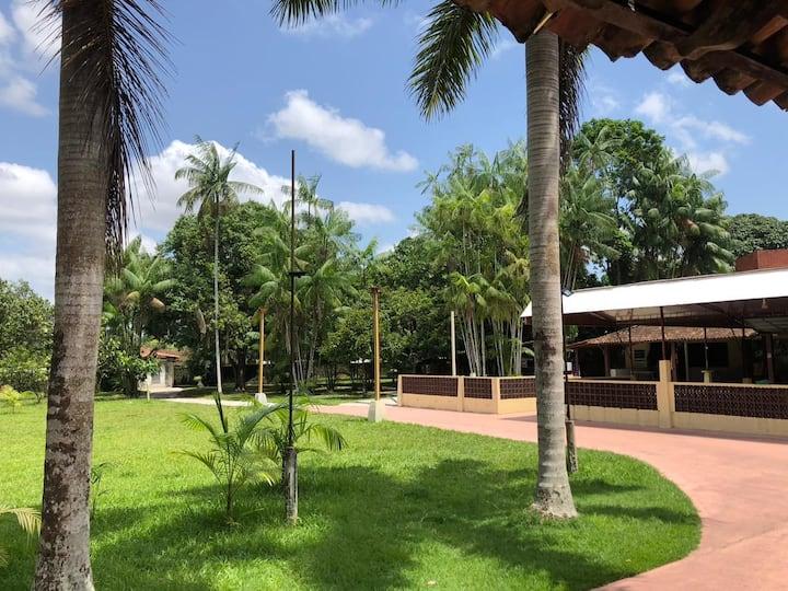 Imagem da área verde do sítio