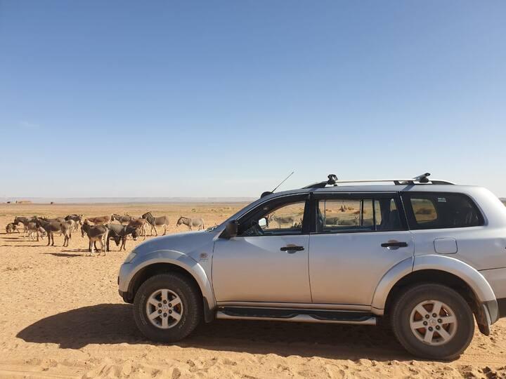 4x4 Jeep in desert