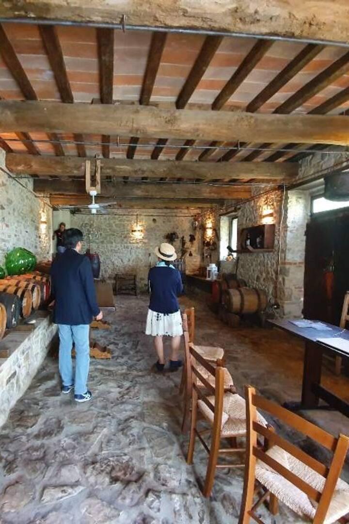 Visita e degustazione in Vinsantaia