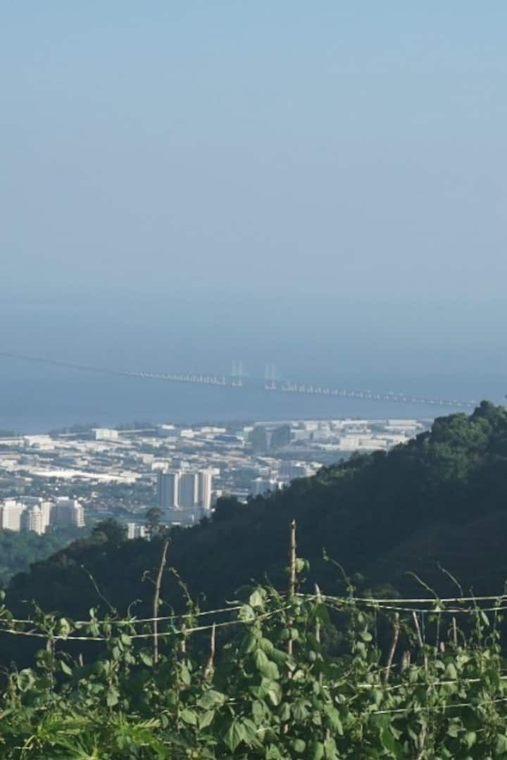 Iconic Penang 2nd bridge