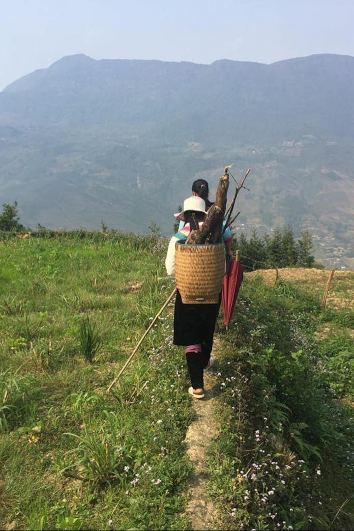 Me carrying wood and bamboo