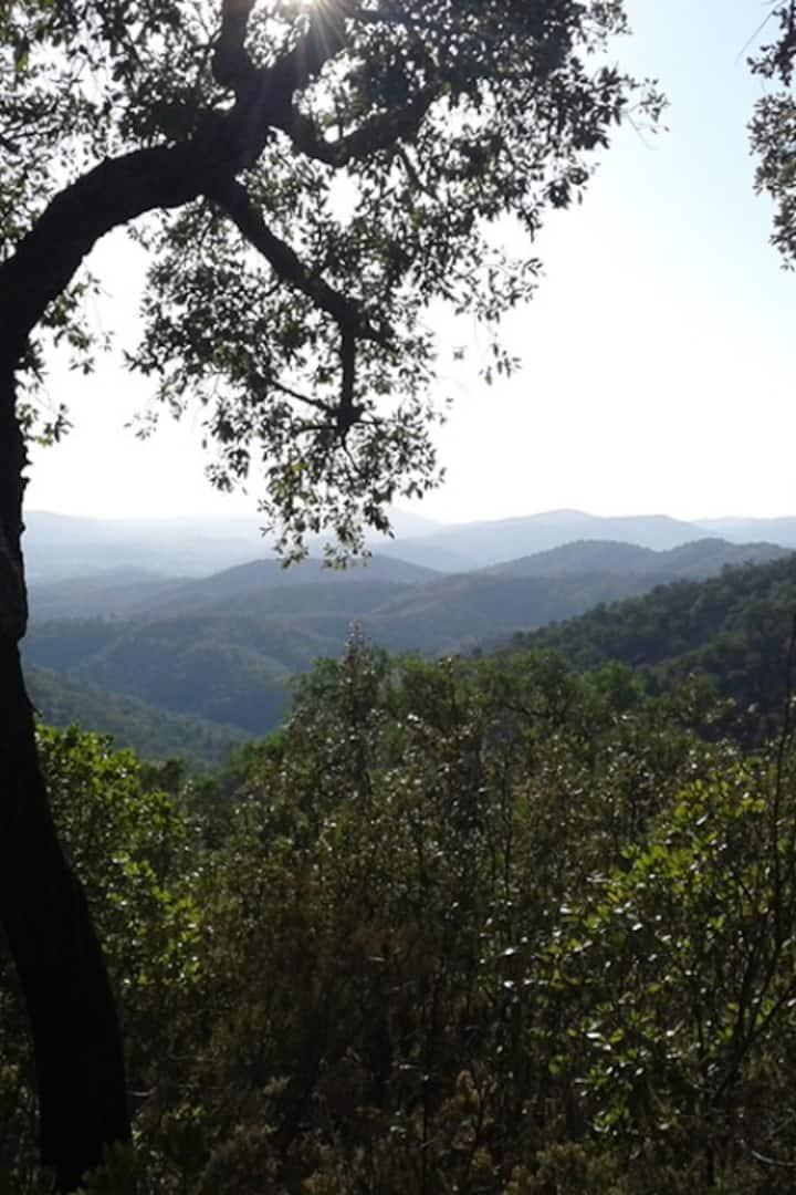 Serra do Caldeirão landscape