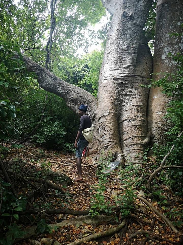 Hiking in Mbudya