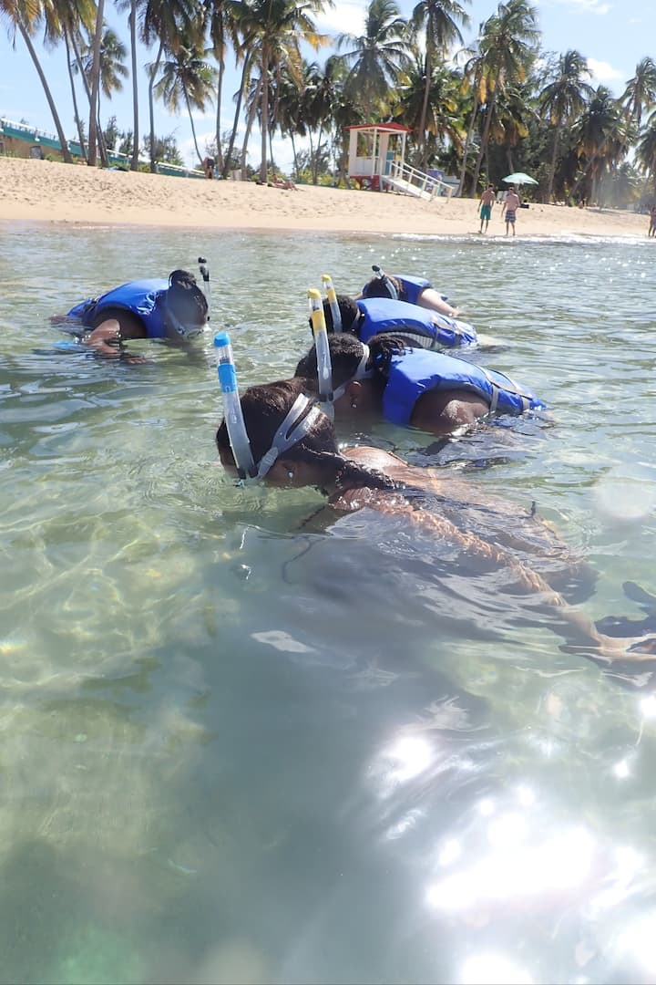 Guests learn to snorkel in shallow water