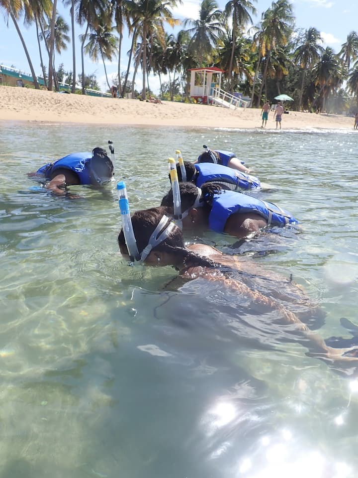 Learn to snorkel!