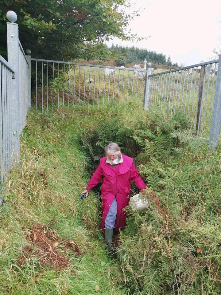 Brigid's well