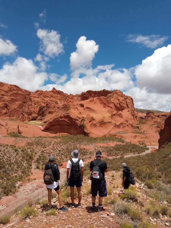 Caminar y desfrutar del paisaje - IC