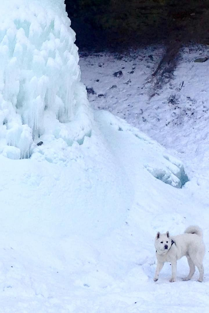 Archie & Waterfall Giessen