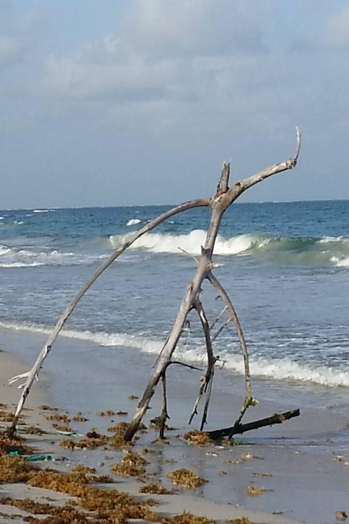Grande Anse Macabou