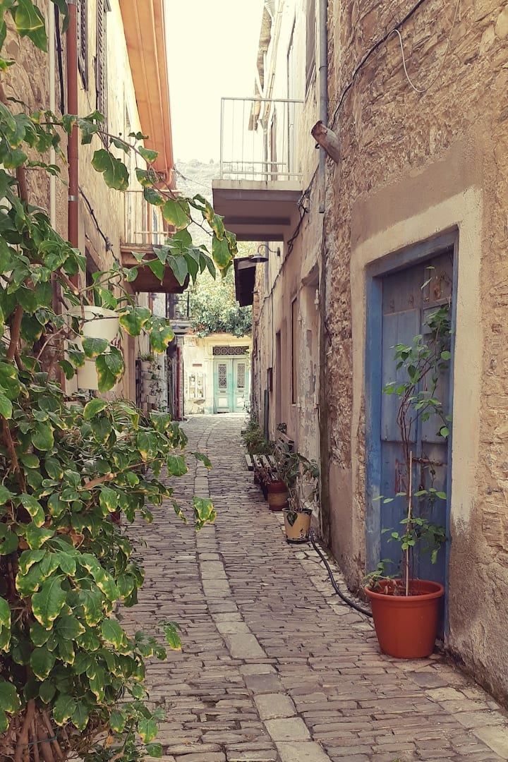 Guided walk through Lefkara village!