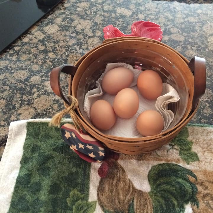 Fresh eggs for sale.