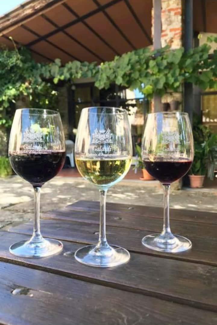 Tasting of 3 wines