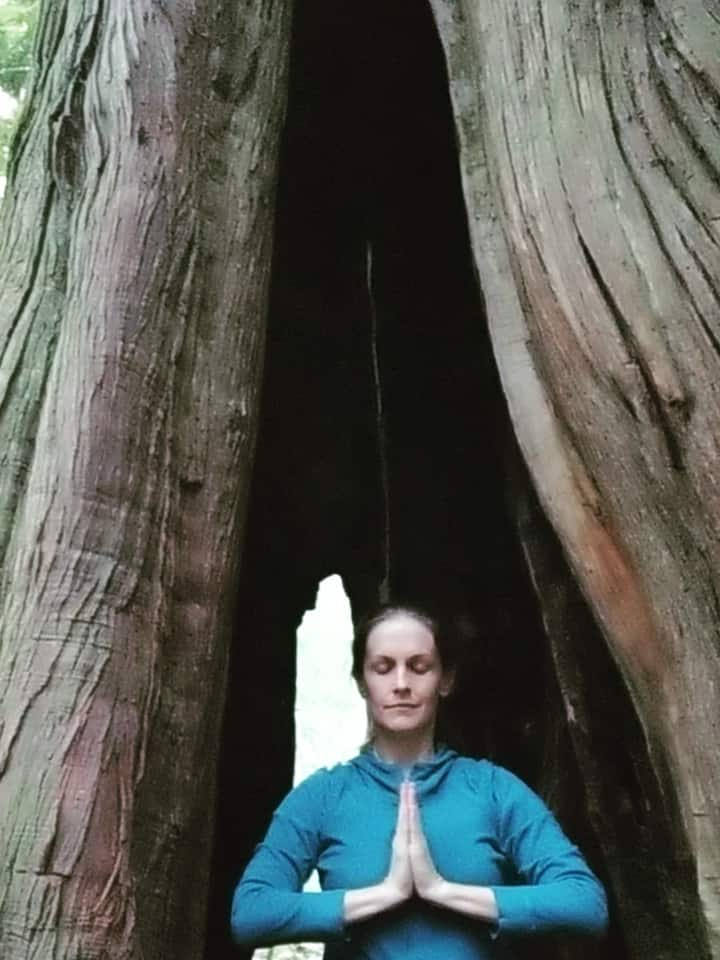 Join for meditation IN a tree