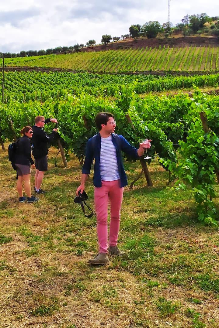 Drinking in the vinyards