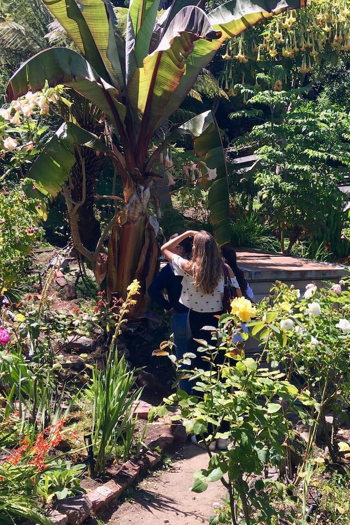 Points de Vue & Collines - Jardin caché