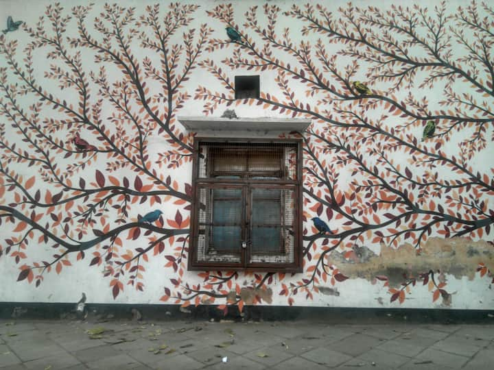 Picture of an old wall with branches