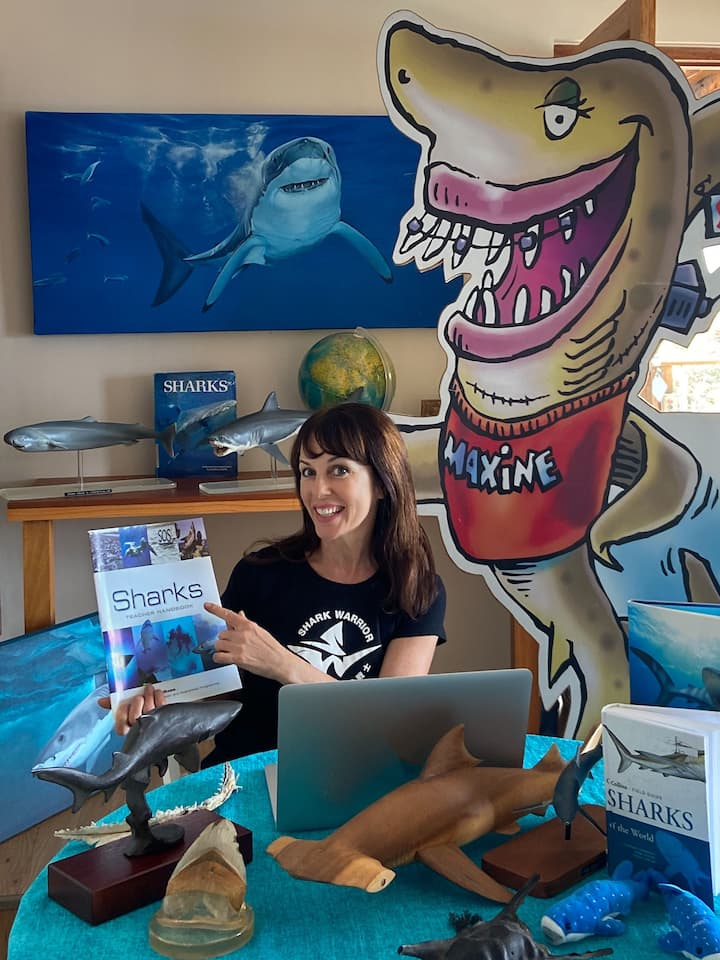 Sharing shark stories online.