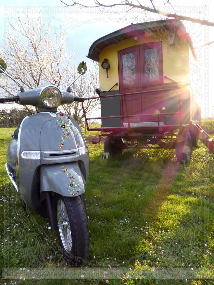 vagabondage en scooter