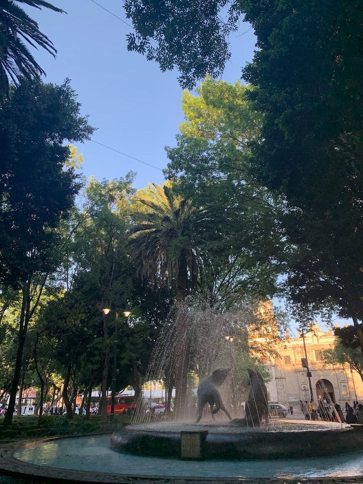 Beautiful plazas