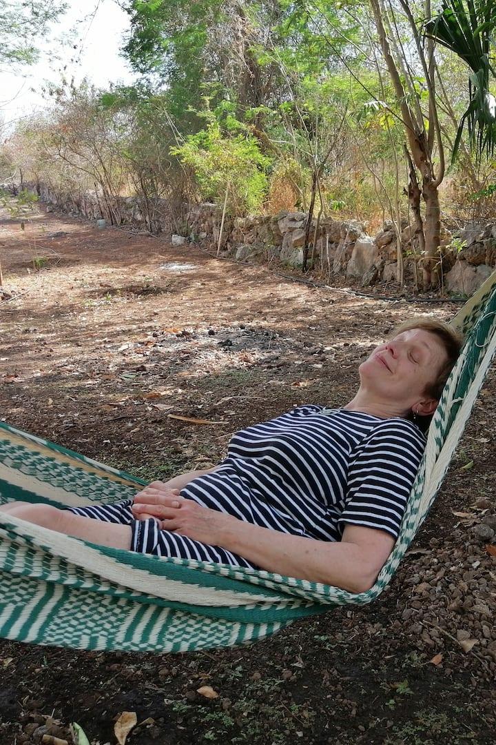 Airbnb体験の写真4