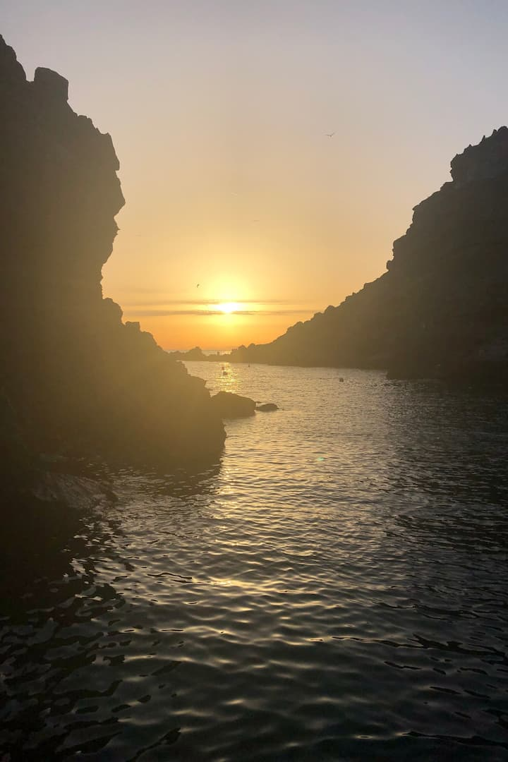 Sunset cruise!
