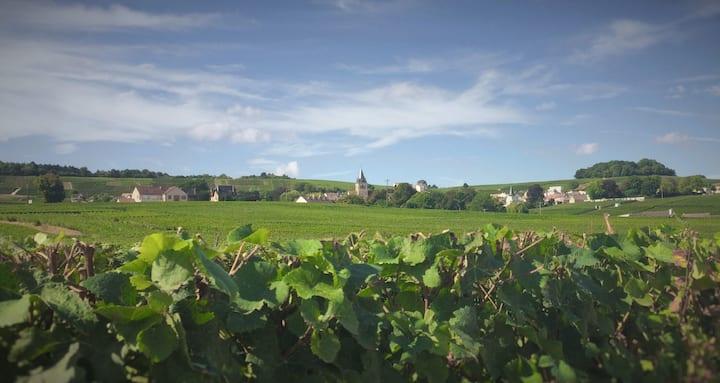 Le magnifique village de Villedommange