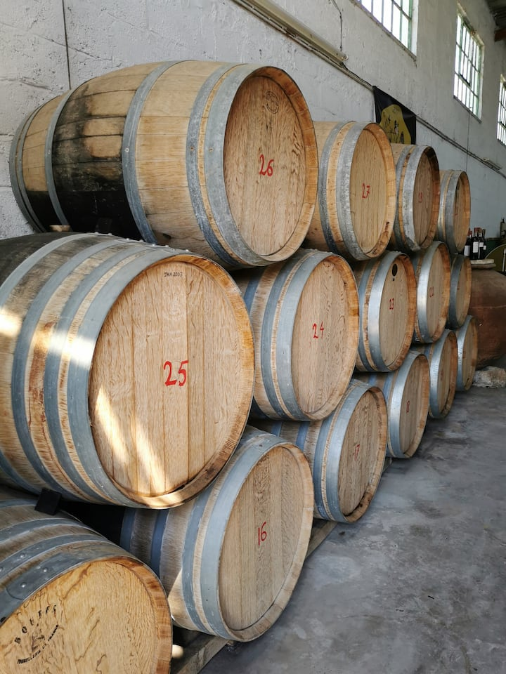 Commandaria maturing in Wine Oak Barrels
